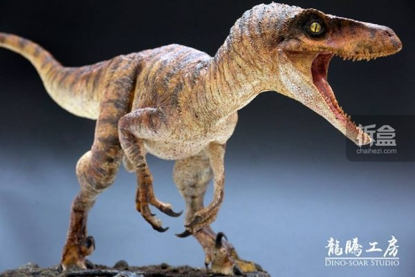 dinosuar-0908-7