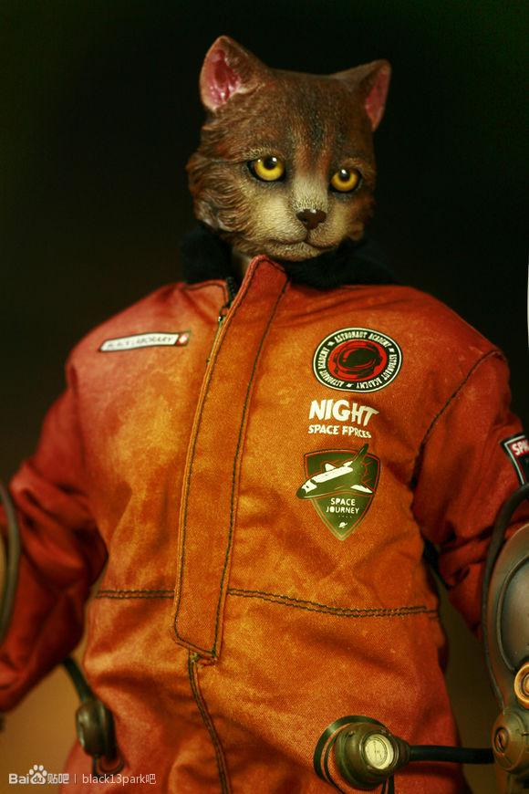 b13-ck-cat-55