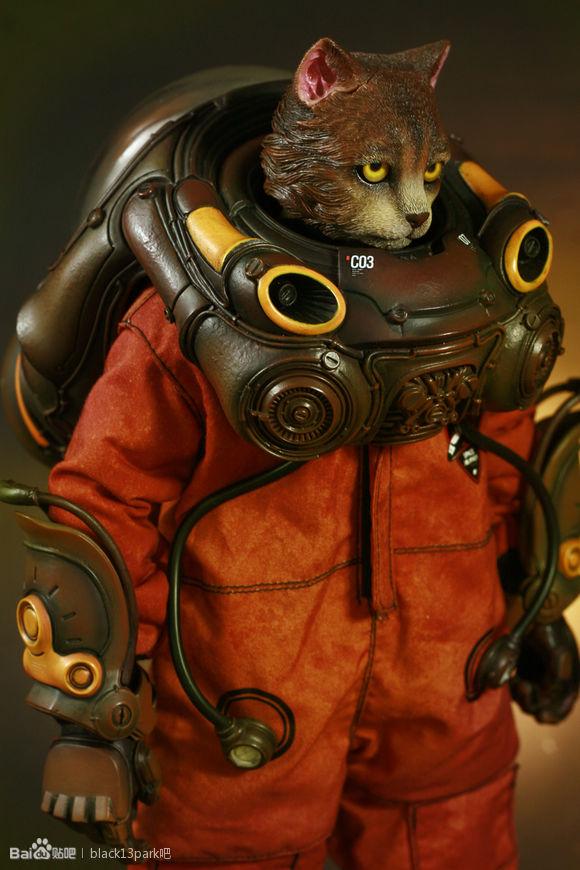 b13-ck-cat-74