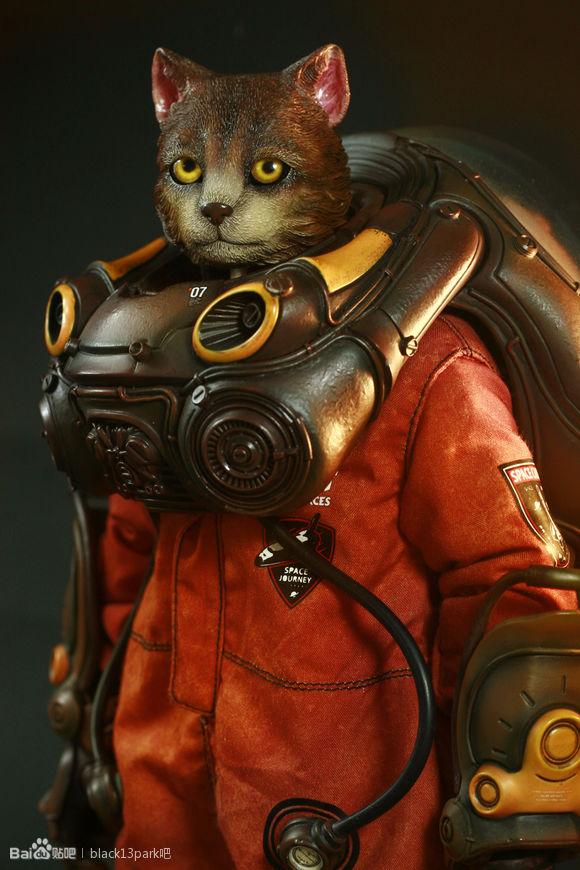 b13-ck-cat-77