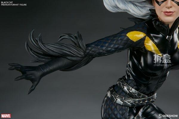 black-cat-pf-sideshow-16