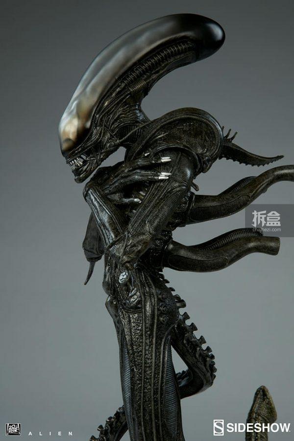 alien-internecivus-raptus-10