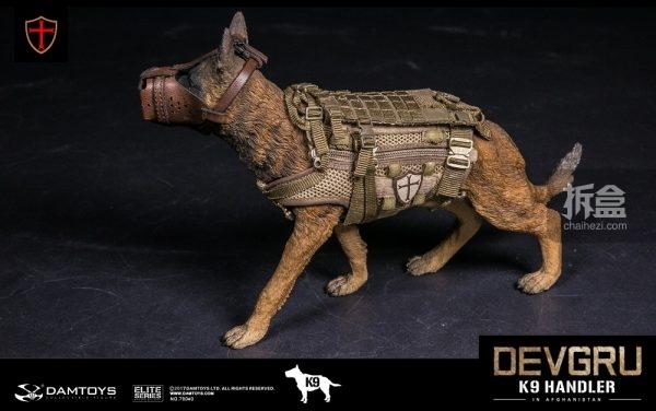 devgru-k9-19