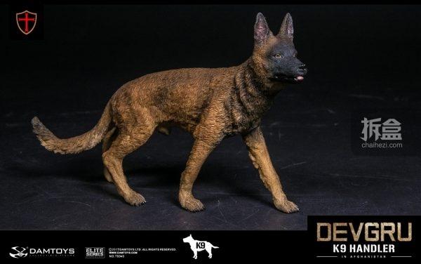 devgru-k9-21