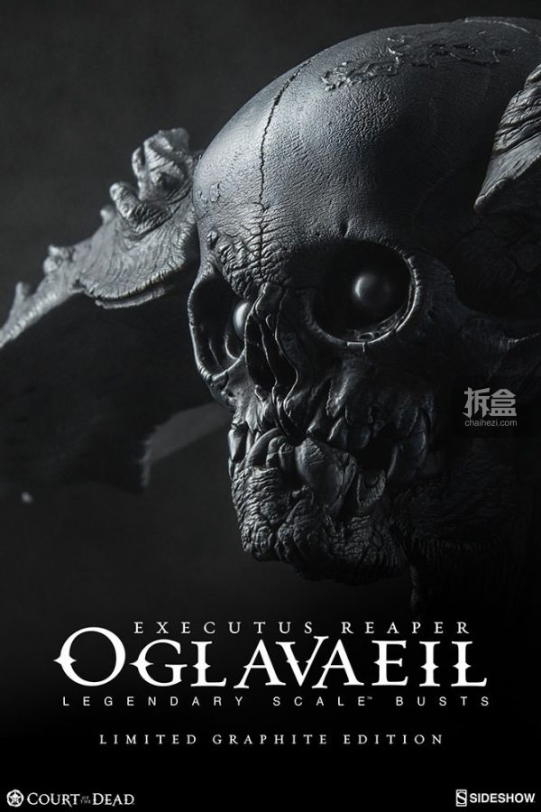 oglavaeil-graphite-edition-5